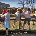 Adenovirus, Scoliosis, and the Zoo